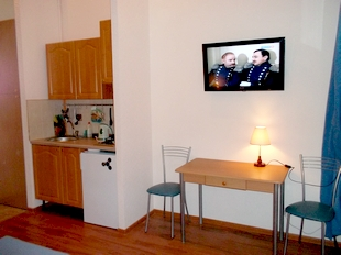 : the apartment is located in the historical center of st petersburg